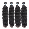 Asteria Unprocessed Brazilian Human Deep Wave Hair 4 Bundles