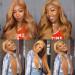 27 Color Human Hair Wig